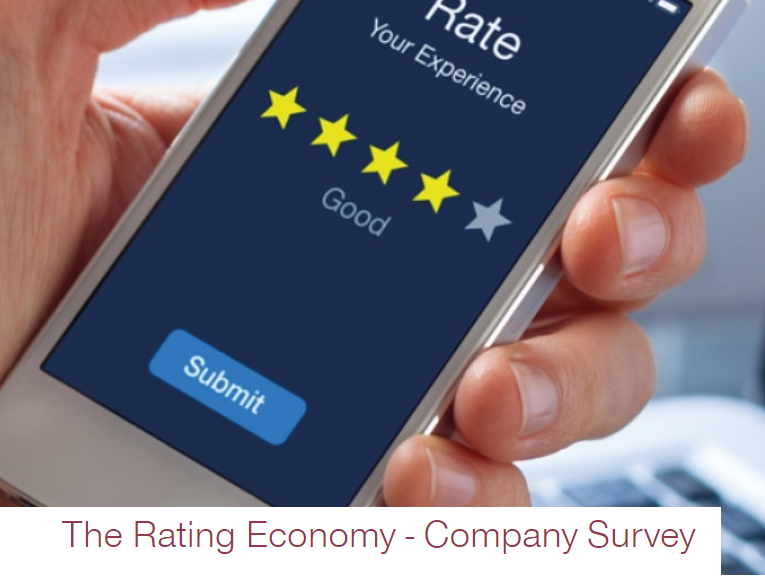 The Rating Economy – Company Survey